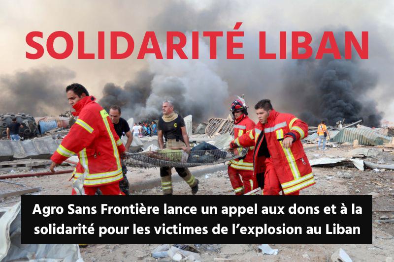LIBAN - ASF lance un appel aux dons et à la